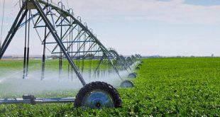 """תמיר עידאן: """"קורא לכל החקלאים לאחד כוחות מול קיצוץ המים"""""""