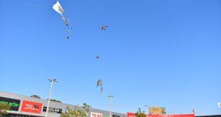 כמענה לטרור: ילדי שדרות הפריחו עפיפוני חיים