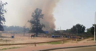מתקפת בלוני תבערה מעזה: עשרות שריפות, תושבים פונו מקיבוץ כרמיה