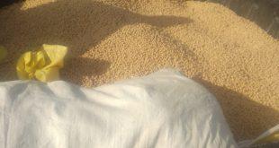 נעצר חשוד בגניבת חצי טון חומוס משדות נחל-עוז